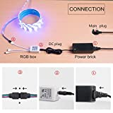 from WenTop WenTop Led Strip Kit,Non-Waterproof Led strip lights 32.8 Ft(10m) ,5050 RGB 300 leds(30 led/m) 44 Key IR Remote Control and DC 12V BS Listed Power Supply, for TV Backlighting,kitchen,Bedroom