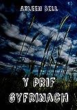 Y prif gyfrinach (Welsh Edition)