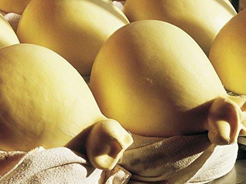 2 x 1 kg - casizolu di pecora fresco prodotto da lino, prodotti di barbagia, nella barbagia di orotelli, sardegna. formaggio a pasta filata da latte crudo di pecora