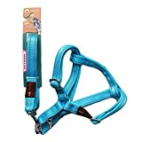Langlebige Pet Dog Nylon Adjustable Loop Training Lead, extrem Durable Reflective Strong Dog Training Leash Rope,Blue,M