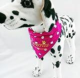 Hundehalstuch als Halsband S M L Wunsch bestickt Muster Stoffe