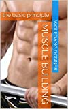 Muscle building: the basic principle (English Edition)