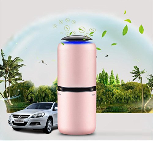 AMYMGLL Inside Fahrzeug Luftreiniger Anion Auto Luftreiniger Dual USB Erfrischungsmittel Aluminiumlegierung Material Doppel-USB-Schnittstelle lokalen Gold Roségold , 2 (Nebel-luft-erfrischungsmittel)