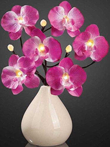 hellum-led-ramificacion-de-la-orquidea-con-jarron-35-cm-con-iluminacion-led-blanco-9-teilig-violeta-