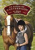 Le haras de Canterwood - En selle, Sacha ! (1)