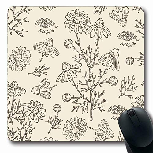 Luancrop Mousepads für Computer Kunst Botanik Kamille Blätter Samen Blumen Kraut Natur Pflege Kosmetik Kosmetik Zeichnung Gezeichnetes Design rutschfeste Oblong Gaming Mouse Pad - Kamille Kraut