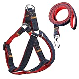 #2: URPOWER Dog Leash Harness Adjustable & Durable Leash Set & Heavy Duty Denim Dog Leash Collar for Small Dog, Perfect for Daily Training Walking Running