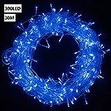 300 LEDs Lichterkette, VINGO 30Meter Lange Lichterkette, Innen und Außen, 8 Modi, IP44 Wasserdicht, Beleuchtungdeko für Weihnachten, Party, Hochzeit, Garten, Terrasse, Blau weiße