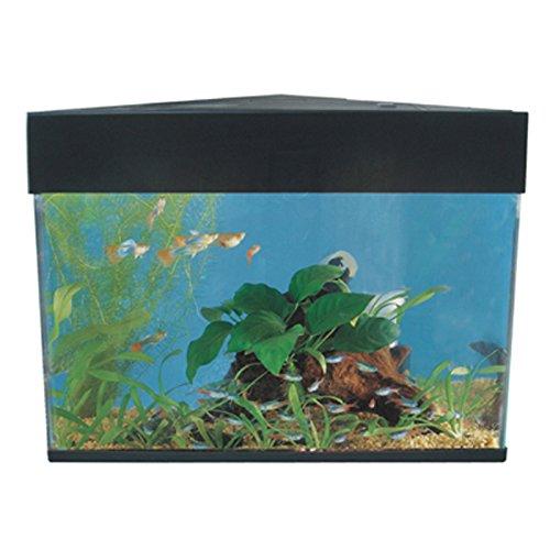 AA-Eck-Aquarium, Nano-Aquarium, 20 L Aquarium, Garnelen-Aquarium