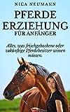 Pferdeerziehung für Anfänger: Alles, was frischgebackene oder zukünftige Pferdebesitzer wissen müssen.