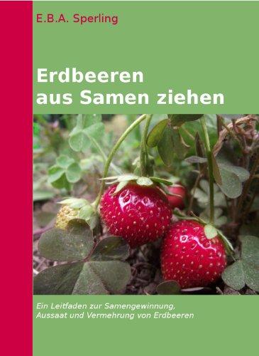 erdbeeren-selber-saen-und-ziehen-erdbeerpflege-1