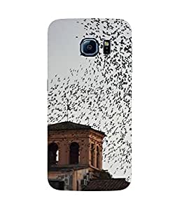 Bird Eye View Samsung Galaxy S6 Case