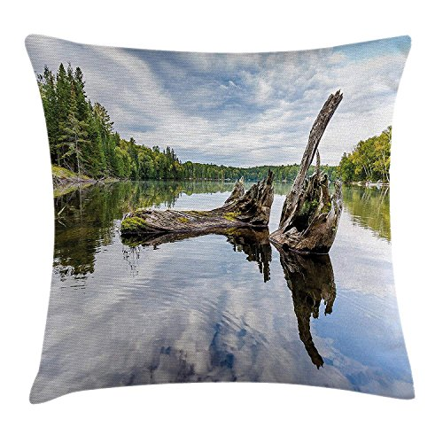 Red Cedar Tree Trunk (Yinorz Driftwood Decor Throw Pillow Cushion Cover, Remains of a White Cedar Tree Trunk in Lake and The Sky Digital Image, Decorative Square Accent Pillow Case, 18 X 18 Inches, Green Light Grey)