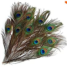 edealing plumas de la cola pcs pavo real natural largo para bouqet sombrerera craft