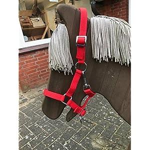 Swiss Horse Nylon Halfter zweifach verstellbar, rot, Fohlen