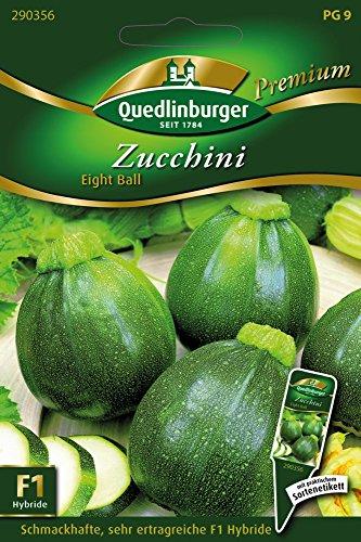 Zucchini Zucchini 'Eight