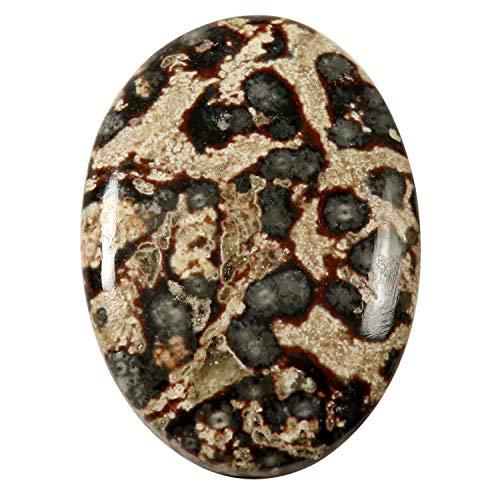 Gems & JewelsHub HO32 Viper Skin Jaspis natürlicher Cabochon Ovaler Edelstein 40,05 ct
