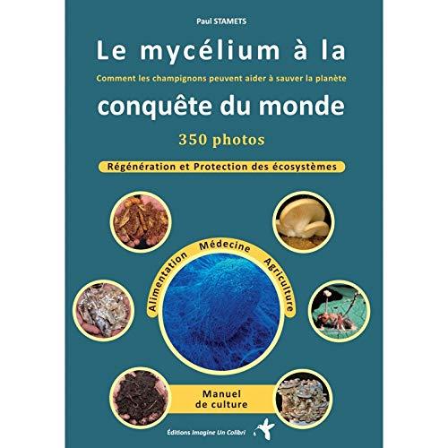 Le mycelium à la conquête du monde : Comment les champignons peuvent aider à sauver le monde