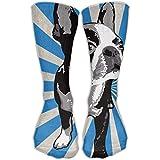 Boston Terriers Strip Unisex Novelty Crew Socks Ankle Dress Socks Fits Shoe Size 6-10