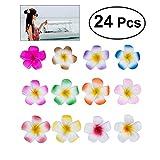 Frcolor 24pc Set 2.4