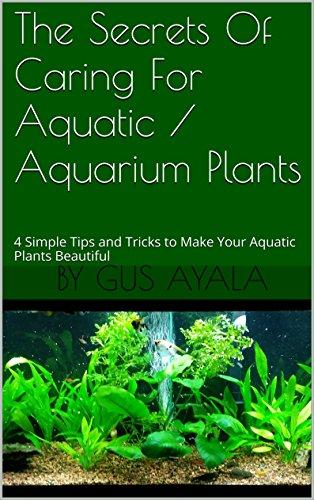 the-secrets-of-caring-for-aquatic-aquarium-plants-4-simple-tips-and-tricks-to-make-your-aquatic-plan