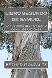 libro segundo de samuel: la historia del rey david
