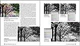 Bildgestaltung. Die große Fotoschule: von Bildanalyse zum goldenen Schnitt – in Fotografie und Kunst - 17