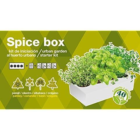 Seed Box SBAROM - Especiera de hierbas aromáticas orégano, perejil, albahaca y cilantro