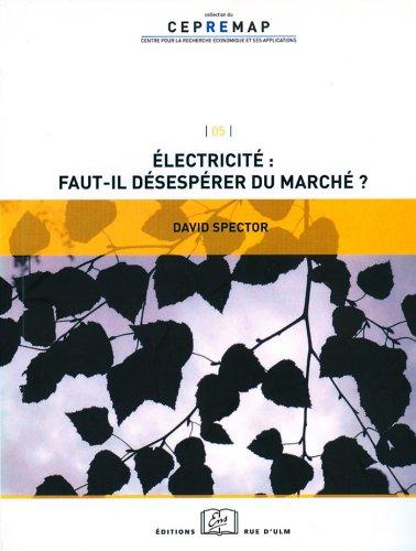 Électricité : faut-il désespérer du marché ?