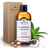 Tree to Tub Real, Arganöl Shampoo für trockenes Haar und Kopfhaut. Der einzige Ph 5,5 Balanced Schuppen Shampoo Für Itchy und empfindliche Haut, mit Lavendel ätherisches Öl und Bio-Wild Soapberries, 8,5 Oz