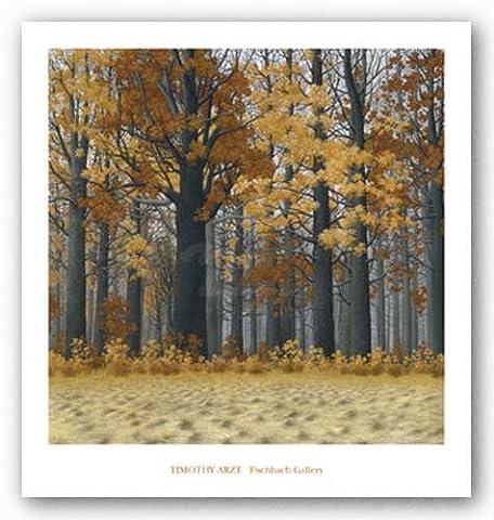 Timothy Wood - Autumn Wood de Timothy Arzt Tirages d'Art