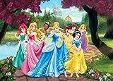 1art1 Principesse Disney - Cenerentola, Biancaneve, Rapunzel E Principesse, Cammino delle Fiori Poster Carta da Parati Fotomurale (160 x 115cm)