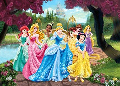 Principesse Disney - Cenerentola, Biancaneve, Rapunzel E Principesse, Cammino delle Fiori Poster Carta da Parati Fotomurale (160 x 115cm)