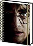 Harry Potter Carnet Bloc-Notes - Harry/Voldemort 3D Couverture (21 x 15 cm)