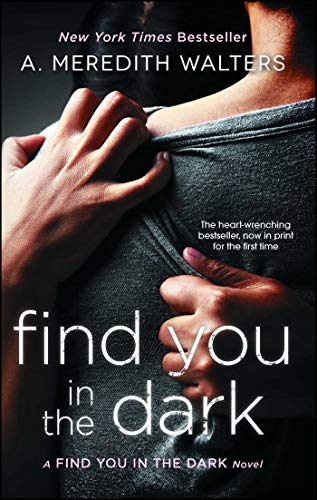 Find You in the Dark (English Edition)