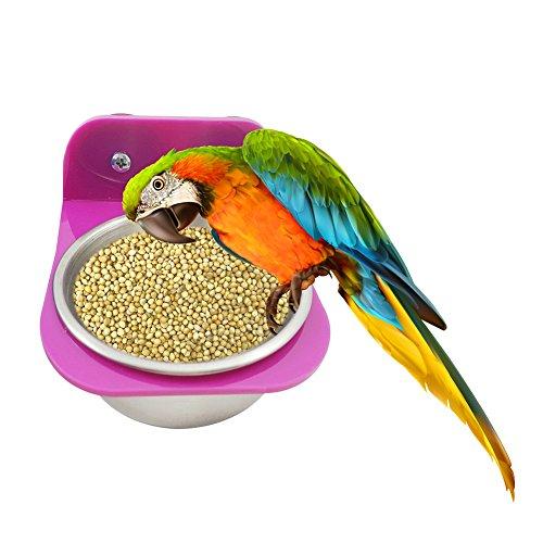 2 in 1 Edelstahl Fressnapf, Haustier Vogel Lebensmittel Wasser Schüssel für Papagei Vogel Kaninchen Hamster, Schüssel mit Bolzenhalte ( Farbe zufällig)