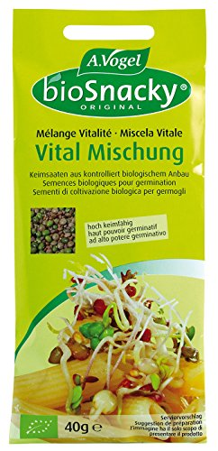 A. Vogel Vital-Mischung (40 g) - Bio