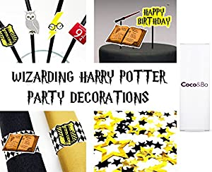 10 x Coco&Bo - Magical Wizarding Cupcake Toppers / Picks - Harry Potter Theme Party Decorations / Cake Accessories