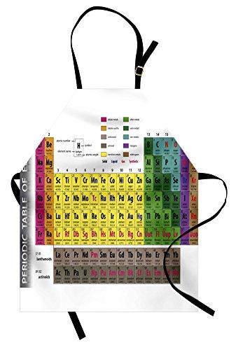 (Ambesonne Moderne Schürze Periodensystem PHD Chemie Student Familie für Wissenschaftsliebhaber Bildung Unisex Küche Latzschürze mit verstellbarem Hals zum Kochen Backen Garten Mehrfarbig)