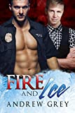 Fire and Ice (Carlisle Cops Book 2) (English Edition)