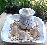 Cera soja perfumada quemadores aroma CITRONELA ANTIMOSQUITOS. Ambientador natural. Forma: 4 BOMBONES, 80gr