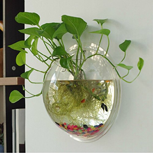 Tinksky Wand Fish Tank Wand hängenden Clear Glas Vase Blume Pflanze Topf Aquarium Bowl-Startseite-Dekoration 23cm (Billig Dekorationen Für)