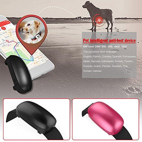 Lifesongs Perseguidor impermeable impermeable del collar del animal doméstico de los perseguidores de GPS del perro elegante del gato del gato