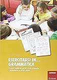 Esercitarsi in. grammatica. Percorsi facilitati per la scuola primaria e secondaria di primo grado