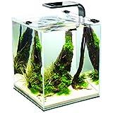Aquael Aquarium Shrimp Set SMART LED, komplett Set mit morderner LED-Beleuchtung (schwarz, 20 Liter)