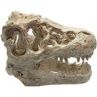 Scrox 1x Ornamento del Acuario Peces Camarones Tortugas Buque del Decoración Tanque de Peces para Escondite Cueva Accesorios Animal Nave Acuario Dinosaurio Adorno Resina 8.5 * 5.5 * 4.5cm Blanco