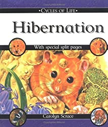 Hibernation (Cycles of Life) by Carolyn Scrace (2002-03-01)