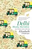 Delhi: Mostly Harmless-One woman's vision of the city