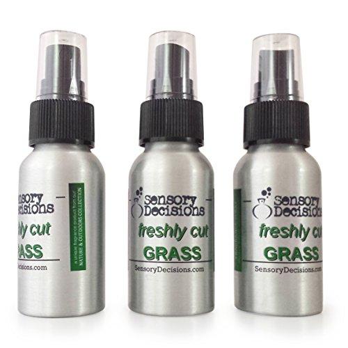 Fresh Cut Grass Spray–Spray ambientador Concentrado recién Cortar Hierba–Hierba Aroma, por Decisiones sensorial, Metal, Plateado, 3 Bottles
