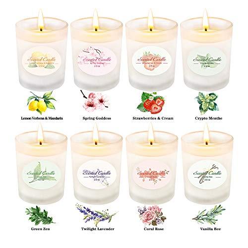 Set de 8 Velas aromáticas perfumadas CREAHINE Cera de Soja Natural Quema un 200 horasVelas De Citronela para Interiores,Día de la Madre Navidad Día de San valentín y Regalo de cumpleaños